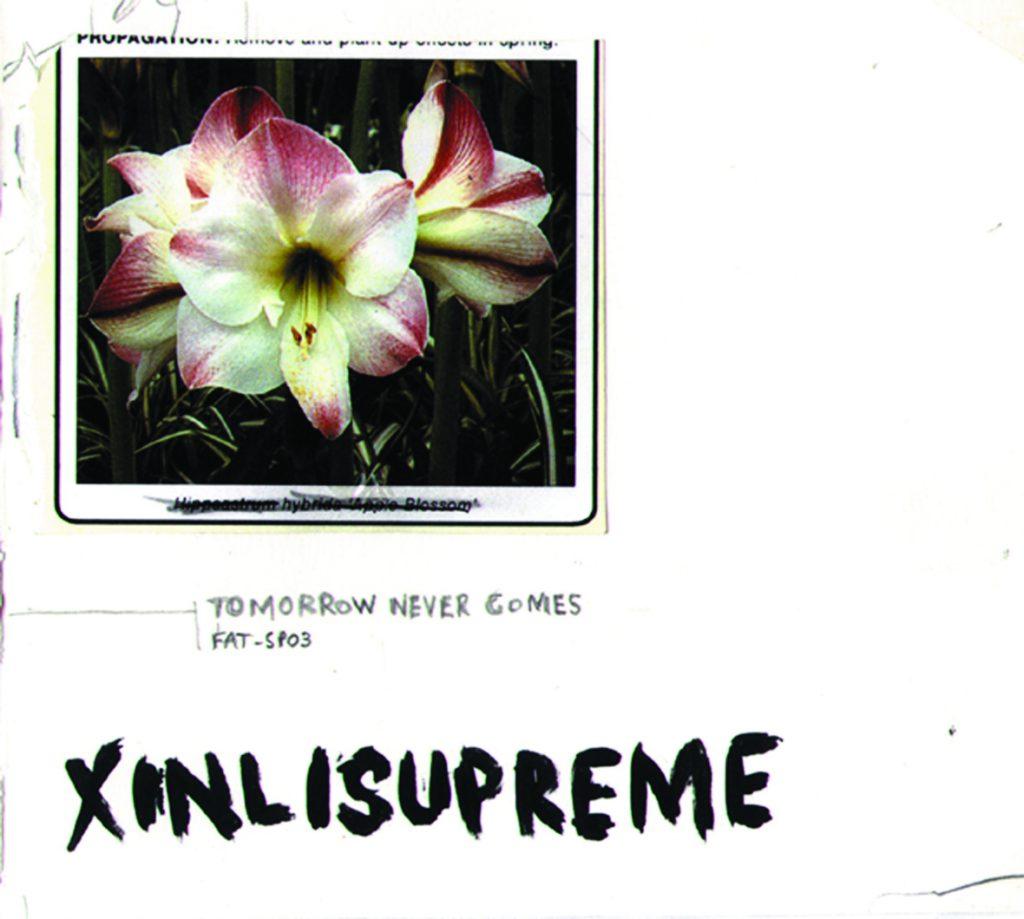Xinlisupreme-TMC